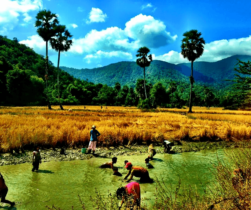 Cambodians catching fish near Phnom Aural, the tallest peak in Cambodia